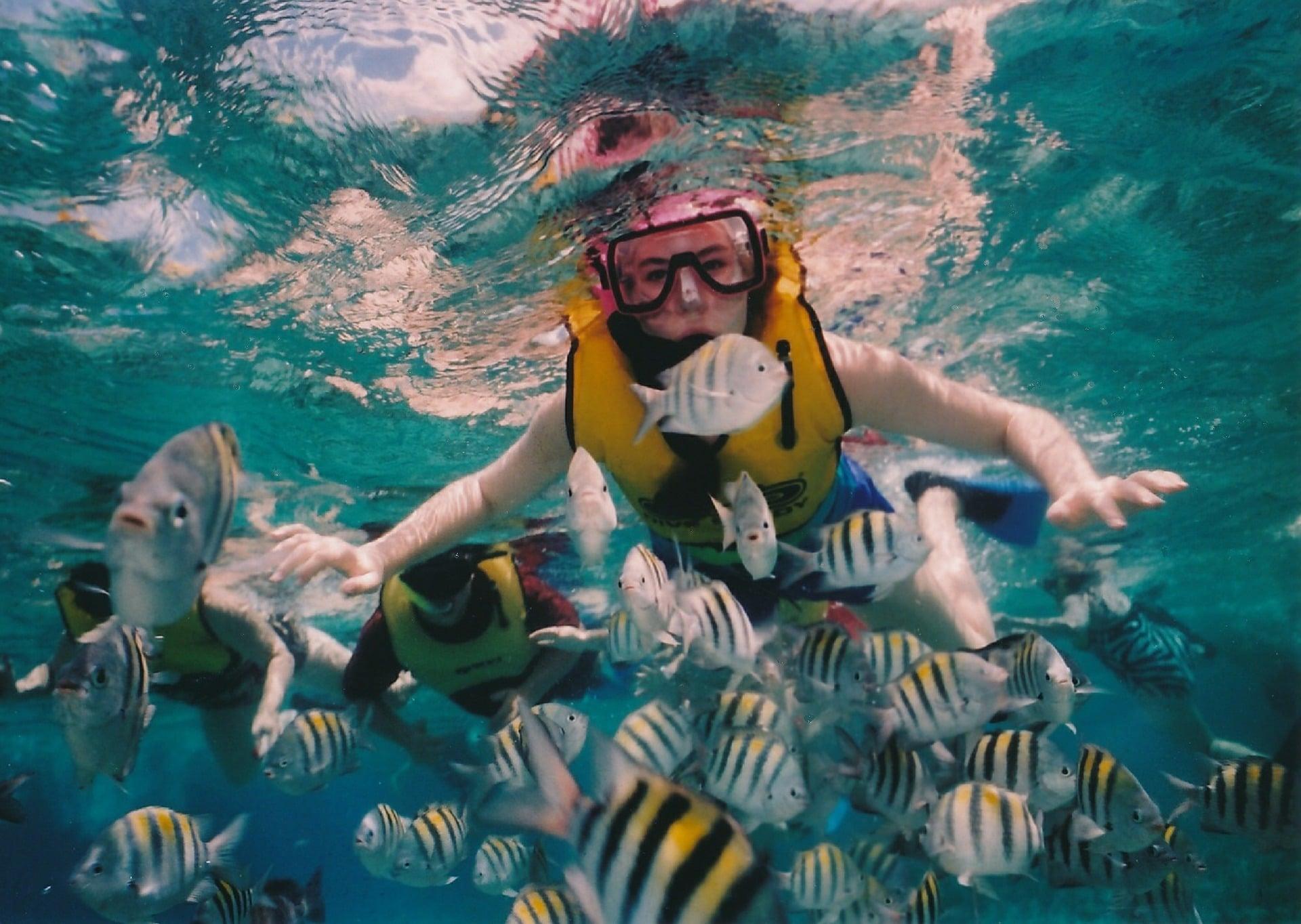 Las mejores playas de México para practicar snorkel