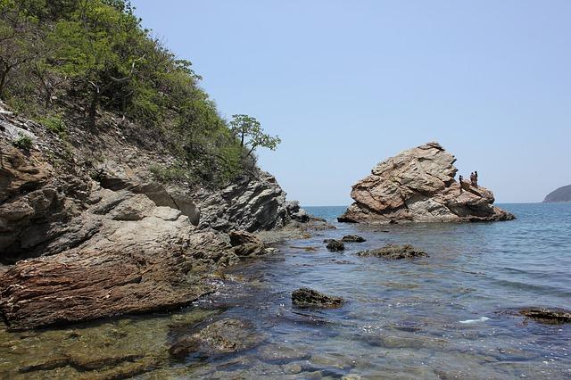 avis playas del caribe 5