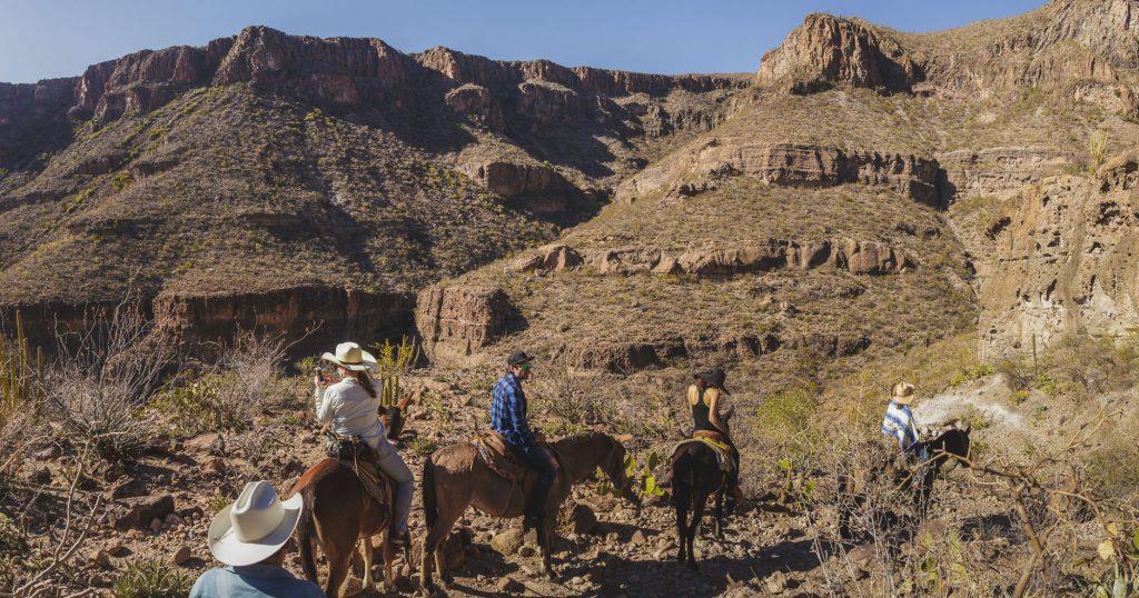 Lugares turísticos de Baja California Sur: San Francisco de la Sierra.